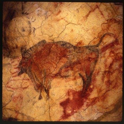 bisont
